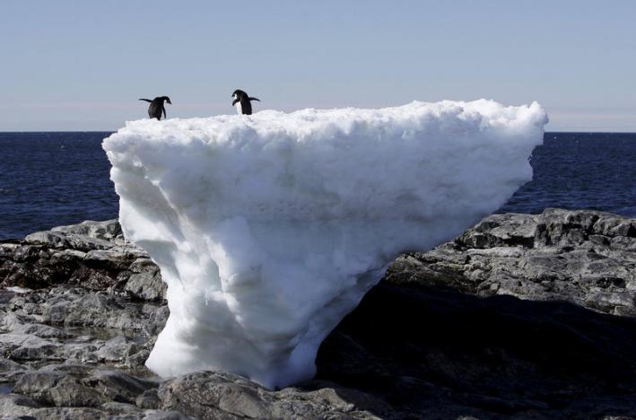 World Meteorological Organization confirms record-high temperature readings in Antarctic Region