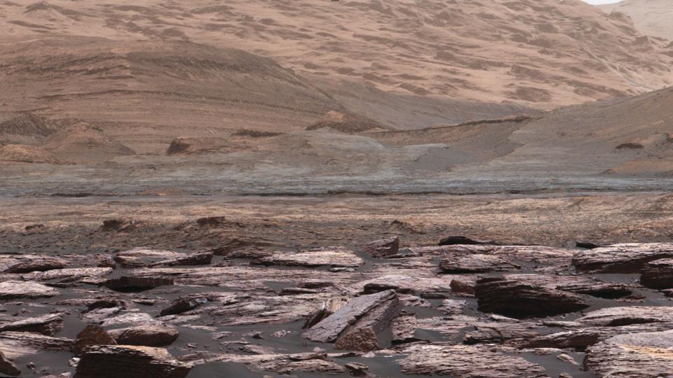 purple rocks on mars