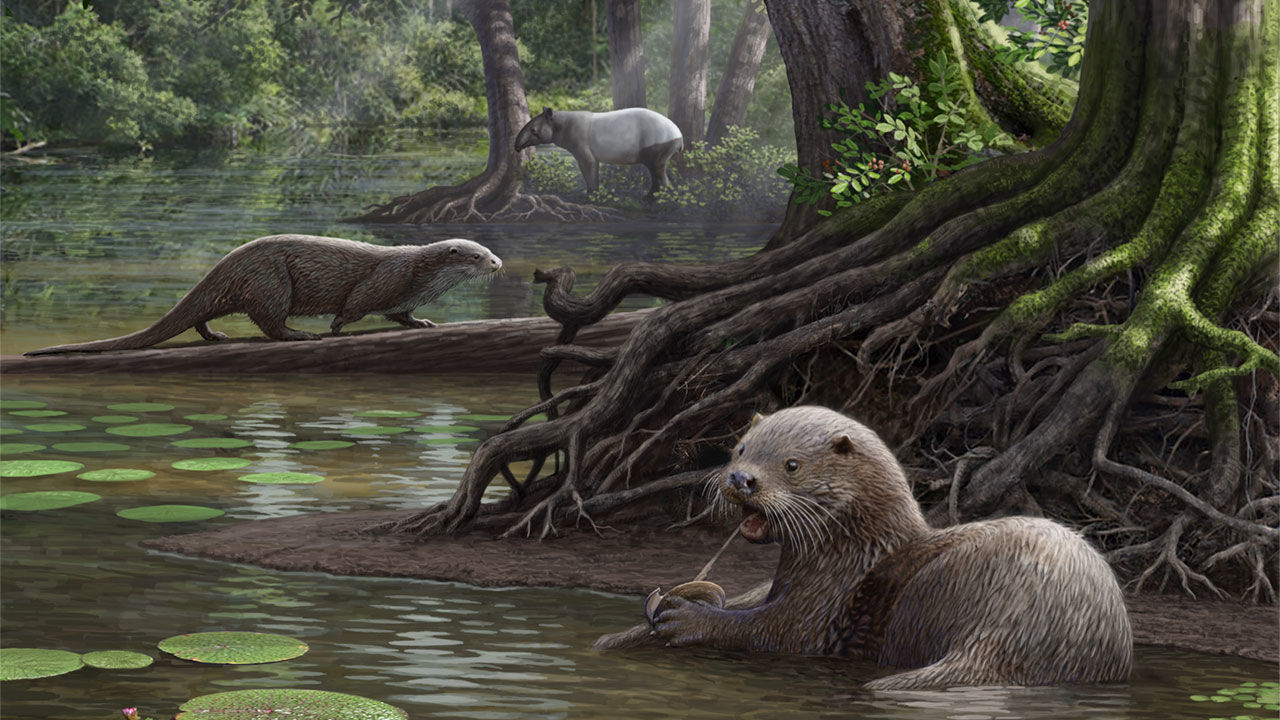 Antediluvian Otter Creatures