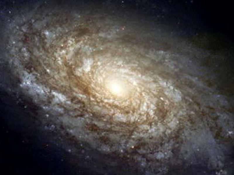 Dark Matter Killing Galaxies