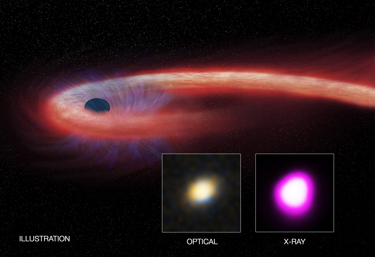 Scientists with Chandra X-Ray Observatory Corroborate World's Longest and Hungriest Black Hole Cluster