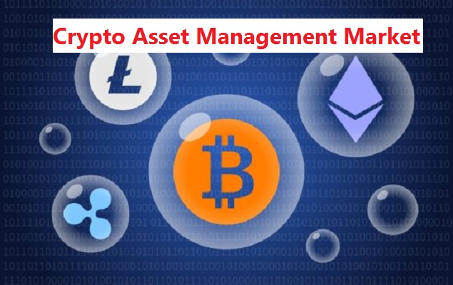 Global Crypto Asset Management Market: Industry Analysis and ...