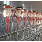 Automatic Feeding SystemAutomatic Feeding System