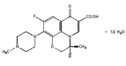 erythromycin can you take ibuprofen