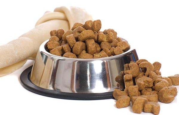 Global Frozen and Freeze-Dried Pet Food Market 2020 - Stella & Chewy,  WellPet, K9 Naturals